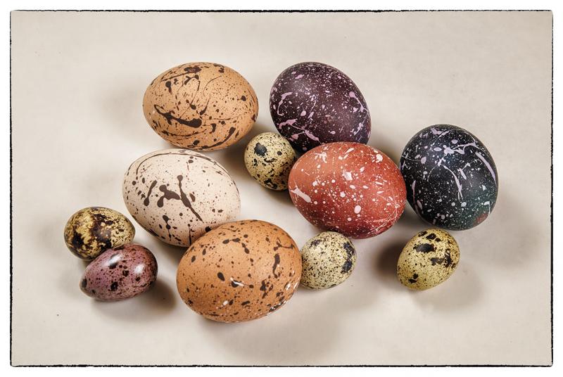 easter eggs5